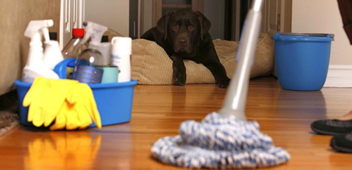 Ekološka sredstva za čišćenje doma